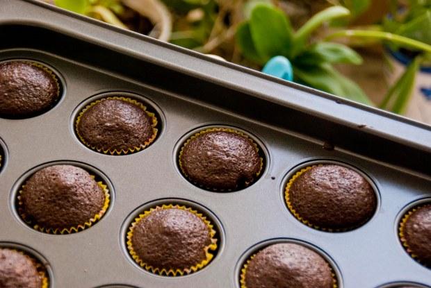 chocolate-minis.jpg
